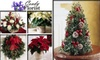 Coady Florist  - Mid-Cambridge: $17 for a Holiday Poinsettia Plus 20% Off Additional Purchases at Coady Florist