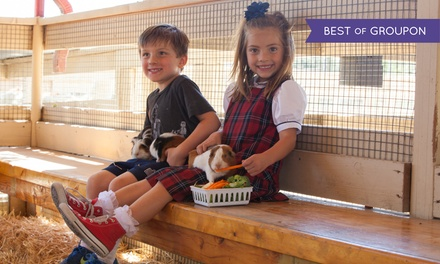 $25 for Four Admissions with Two Train Rides and Two Crafts at Zoomars ($54 Value)