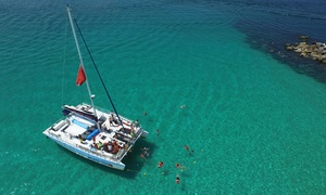 Island Time Sailing: 3.5-Hour Dolphin and Snorkeling Tour for Two or Four from Island Time Sailing (Up to 38% Off)
