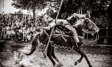 $22 for a Single Adult Admission to the Florida Renaissance Festival ($28.07 Value)