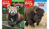 Up to 66% Off Subscriptions to Ranger Rick Jr. Magazine
