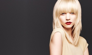Up to 56% Off Aveda Haircut and Botanical Packages  at Moda Aveda Salon and Spa, plus 6.0% Cash Back from Ebates.