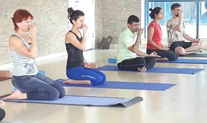 Yoga Ashram: Five Kids or Prenatal Yoga Classes at Yoga Ashram