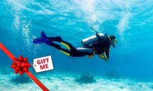 Pro Dive: Open Water Dive Course on a Weekday ($199) or Weekend ($249) with Pro Dive, Three Locations (Up to $499 Value)