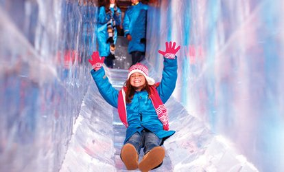 image for ICE! featuring A Charlie Brown Christmas at Gaylord Opryland Resort (Up to 37% Off). 53 Options Available.