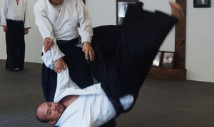 Southland Aikido: Four Weeks of Unlimited Martial Arts Classes at Southland Aikido (54% Off)