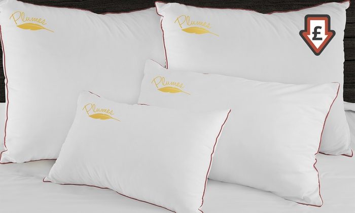 oreillers plumes sampur groupon. Black Bedroom Furniture Sets. Home Design Ideas