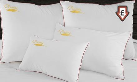 1 ou 2 oreillers à plumes Sampur