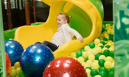 Admission, Membership, or Event Rental at Tree of Life Play + Cafe (Up to 55% Off). Six Options Available.