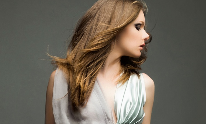 Cheveux by Christina - Sugar Land: Haircut and Blow-Dry with Optional Single-Process Color or Full Highlights at Cheveux by Christina (Up to 51% Off)