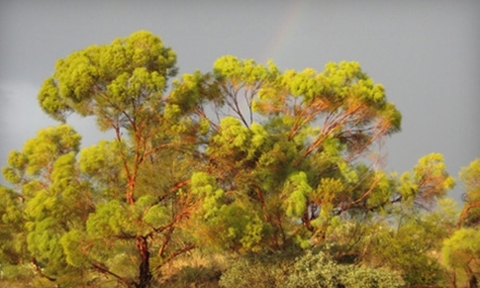 Boyce Thompson Arboretum - North Pinal: $30 for a Family Membership to Boyce Thompson Arboretum in Superior, AZ