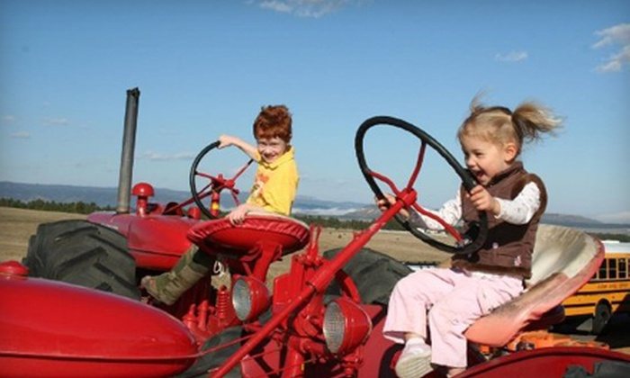 Colorado Pumpkin Patch - Black Forest: Farm-Day Outing and Drinks for Two or Four at the Colorado Pumpkin Patch in Colorado Springs