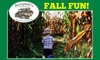 Up to 39% Off Corn Maze at Borzynski's Farm & Floral Market
