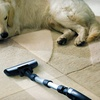 Up to 54% Off Carpet-Cleaning from Steam Solutions