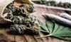 Up to 38% Off Cannabis Walking Tour at Explore San Francisco