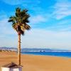 Valencia: hasta 14 noches en hotel 4* con desayuno