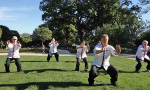 Chinese Kung Fu Center: $30 for $75 Worth of Martial-Arts Lessons — Chinese Kung Fu Center