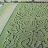 Maize Maze Entry for Three
