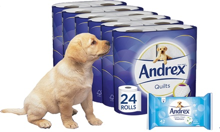 24, 48 or 96 Rolls of Andrex Toilet Paper