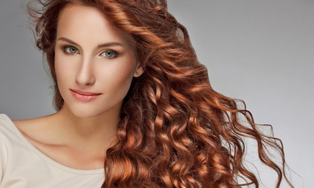 Haircare Packages at Prestige Salon & Spa (Up to 56% Off). Four Options Available.