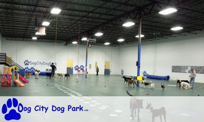 Dog City Dog Park - Robbinsdale - Crystal - New Hope: $49 for an Unlimited-Access Summer Membership and One-Hour Doggy-Psychology Session at Dog City Dog Park ($420 Total Value)