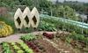 Protezione copri piante esterne