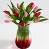 58% Off Sweetheart Tulips With Ruby Ombre Vase from ProFlowers