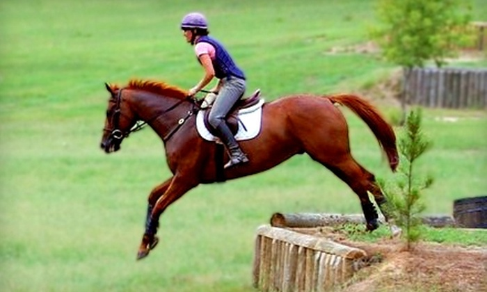 Ash Stables - New Ellenton: $26 for a Private One-Hour Horseback-Riding Lesson at Ash Stables in Aiken ($60 Value)