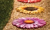 Flower-Themed Stepping Stones (3-Pack): Flower-Themed Stepping Stones (3-Pack)