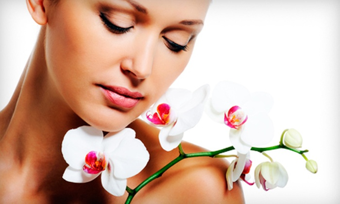 Anne Maaden Cosmetic Laser & Day Spa - Guelph: Laser Hair-Removal Packages at Anne Maaden Cosmetic Laser & Day Spa