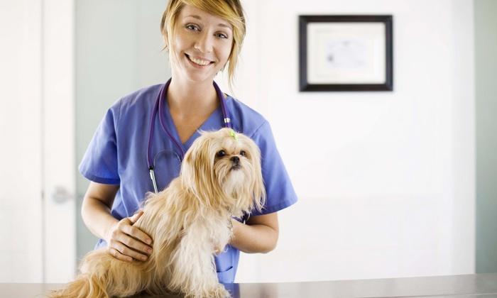 Saratoga Veterinary Hospital - Saratoga: $16 for $35 Worth of Veterinary Services — Saratoga Veterinary Hospital