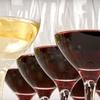 Half Off Wine Society Membership