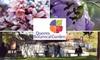Half Off Botanical Garden Membership