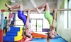 The Little Gym - The Little Gym: Three or Six Kids' Classes with Free Play and Membership, or Kids' Summer Camp at The Little Gym (Up to 72% Off)