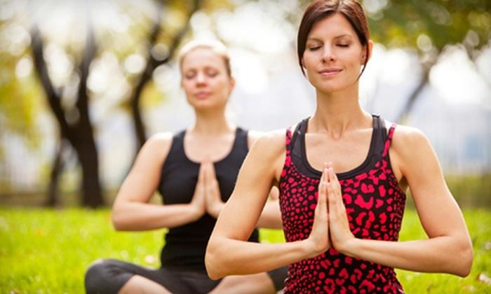 Body Mind Spirit Yoga - Delmar: 6 or 10 Kripalu Yoga Classes at Body Mind Spirit Yoga