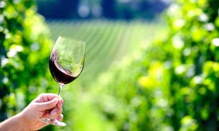 Wine Tasting and Winery Tour with Wine Glasses for Up to Four or Eight at Winneshiek Wildberry Winery (45% Off)