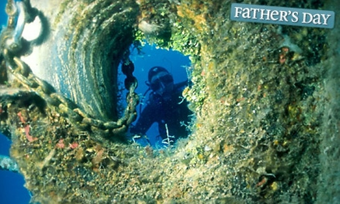 The Dive Shop - Merrifield: $30 for an Discover Scuba Diving Class at The Dive Shop in Fairfax ($60 Value)