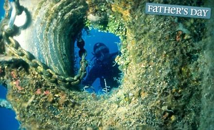The Dive Shop - The Dive Shop in Fairfax
