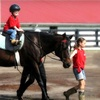 51% Off at Louisville Equestrian Center