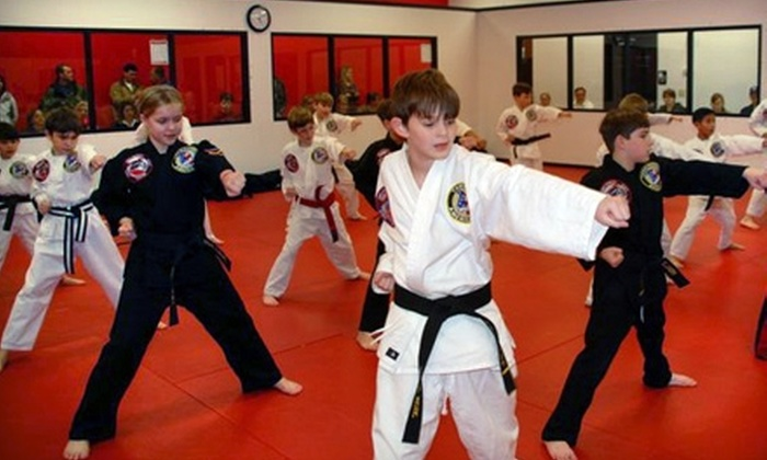 David Vincent's Martial Arts & Fitness - South Baton Rouge: $35 for One Month of Unlimited Membership at David Vincent's Martial Arts & Fitness ($144 Value)