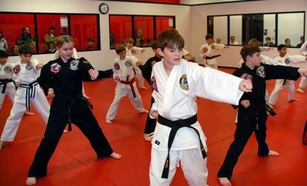 David Vincent's Martial Arts & Fitness - David Vincent's Martial Arts & Fitness in Baton Rouge