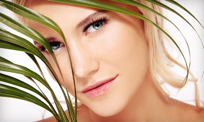 Bella Vita Studio & Spa- Mandi - Northland: Two, Four, or Six Microdermabrasions With Partial Facial at Bella Vita Studio & Spa (Up to 61% Off)