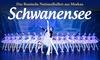 """Stimmen der Welt - Gasteig Philharmonie: 2 Tickets für """"Schwanensee"""" mit dem Russischen Nationalballett am 11.02. in der Philharmonie (bis zu 48% sparen)"""