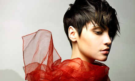 Cut and Condition with Optional Full Color or Highlights from Lindsey Lennard at The Mane Design (Up to 63% Off)
