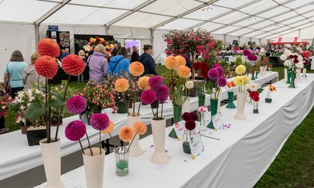 Chorley Flower Show, 27 and 28 July at Astley Park, Chorley