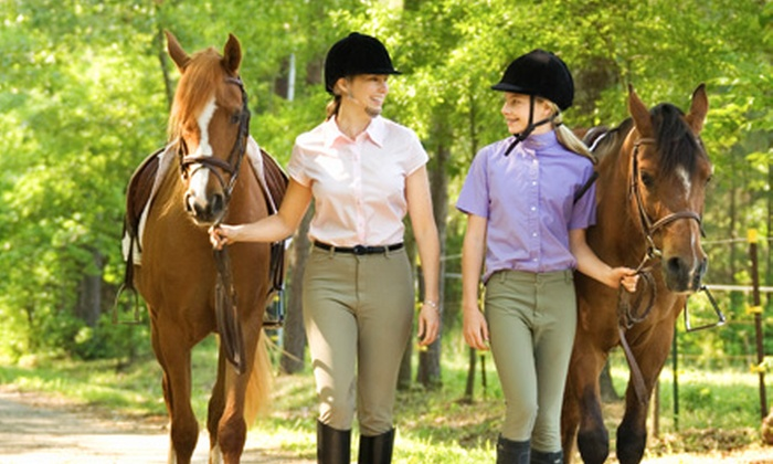 Arcadia Stables - Holly: $45 for Two One-Hour Private Riding Lessons at Arcadia Stables in Holly ($100 Value)