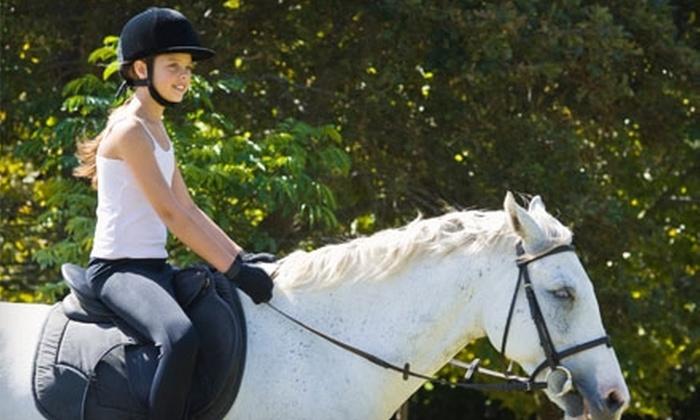 Bluegrass Riding Academy - Lexington-Fayette: $25 for Two 30-Minute Riding Lessons at Bluegrass Riding Academy ($50 Value)