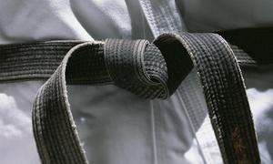 Glenbrook Martial Arts Llc: $76 for $149 Worth of Services — Glenbrook Martial Arts