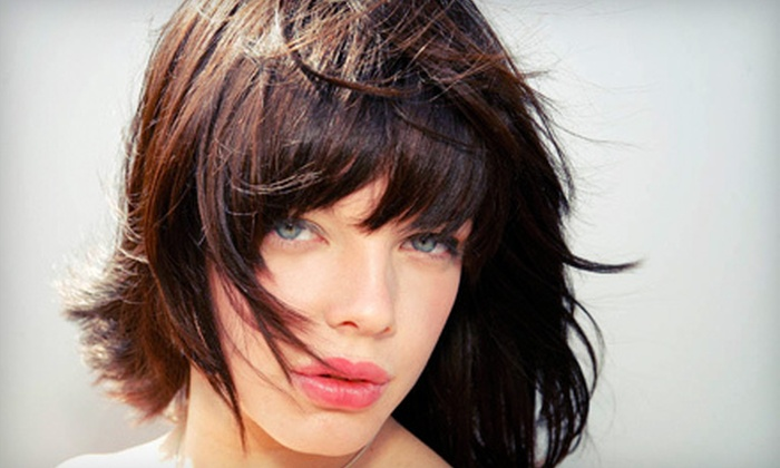 Twiggs Salon - Plymouth - Wayzata: $49 for Haircut and Brow Shaping at Twiggs Salon in East Wayzata (Up to $135 Value). 20% Discount Off Color Services During Visit.