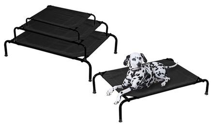 lit de camp pour animaux groupon shopping. Black Bedroom Furniture Sets. Home Design Ideas
